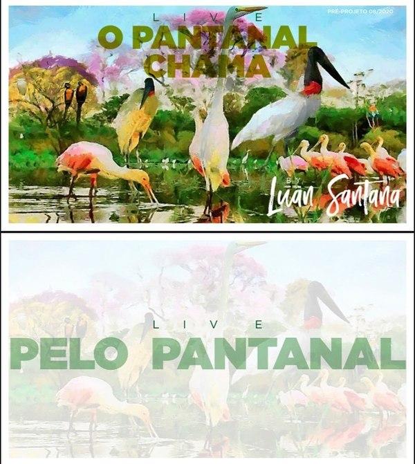 Luan Santana anuncia live no Pantanal para alertar sobre queimadas