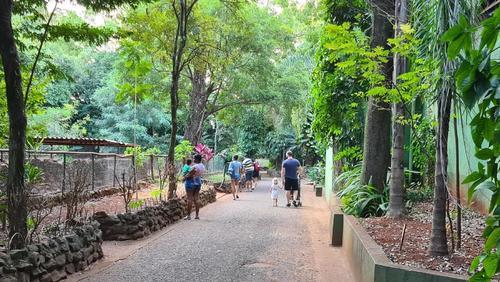 Após quase dois meses, Bosque reabre ao público em Ribeirão Preto