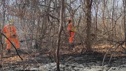 Polícia Militar autua suspeito de causar incêndio em Minas Gerais