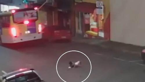 Criança é arremessada para fora do carro e sobrevive após acidente; veja as imagens