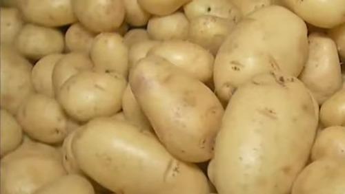 Problema para o consumidor: preço da batata sobe 25% em um ano