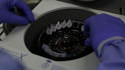 Ribeirão Preto investiga caso de coronavírus