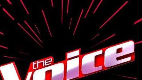 """Boninho anuncia edição do """"The Voice Brasil"""" para maiores de 60 anos"""